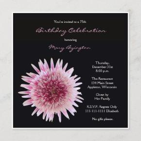 75th Birthday Party Invitation Gorgeous Gerbera