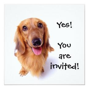 """Cute Puppy """"You're Invited!"""" Personalized Party Invitation"""