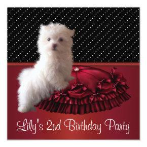 Cute White Puppy Birthday Party