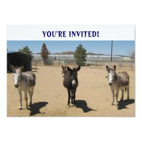 Cutest Birthday Burros Western Invitation