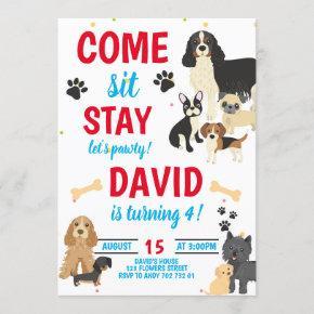 Dog Birthday Pawty Boys Birthday Invitation
