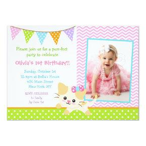 Kitty Cat Birthday Invitations