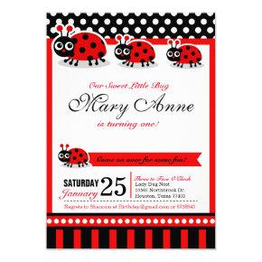 Lady Bug Birthday Party Invitation