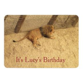 Lucys Birthday Lion Invitations
