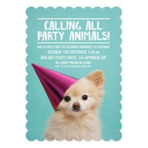 PET DOG'S PUPPY PARTY PHOTO INVITE