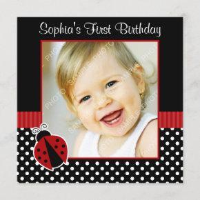 Red Black Ladybug Polka Dot 1st Birthday Photo Invitation