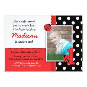 Red ladybug 1st Birthday Invitations