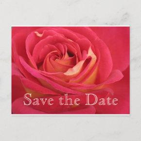 Rose Save the date 80th Birthday Celebration PostC Announcement Postcard