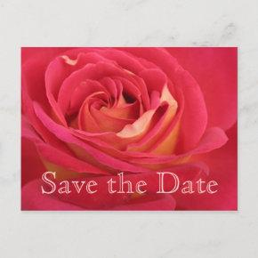 save the date birthday invitations page 3 candied clouds